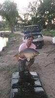 godsavethefish