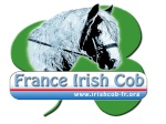 France Irish Cob
