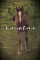 loveirishforever