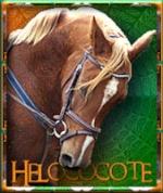helococote38