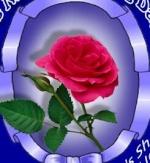 احب الورد