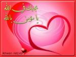 صياد الحب
