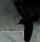 Sinrus