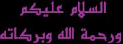 La madrassa c'est oummi (Forum sur l'école à la maison) 4034773454
