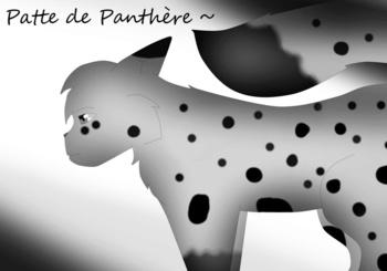 Patte de Panthère