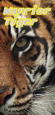 Crocs du Tigre