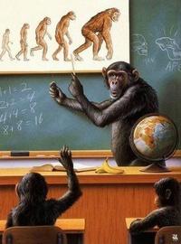 Evolutionniste