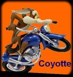 coyotte33