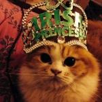 Catsoune