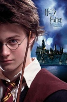Professor Harry Potter