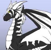BlackWhite Dragón