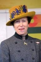 Mrs Amanda Phillips
