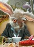 мартовский заяц