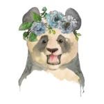 Панда Цзя - old