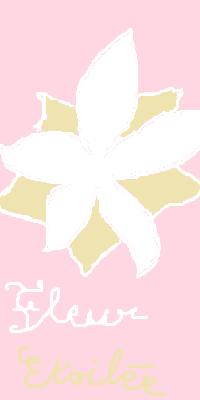 Fleur Etoilée