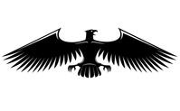 a águia