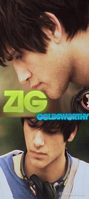 Zig V. Goldsworthy