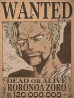 [lolicon team]R.Zoro