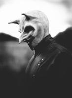 Raven Visago