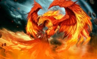 Phoenix91