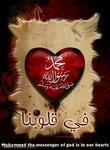 محمود الجعفرى