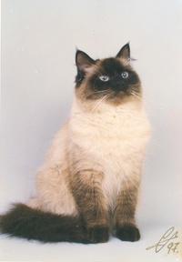 Наталья1979