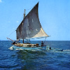 Riječna plovila 4-82