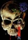 skull333