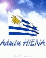AdminHIENA