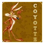 Coyotte