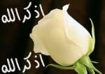 ً¨°•√♥ شمــوووخ ♥√•°¨ً