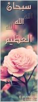rose-pretty