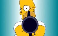 Homer31