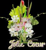 Jolie-Coeur