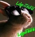 Lapiinou