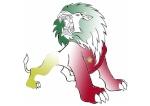 Lioninho 11