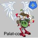 Palat-cord
