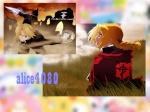 alice4080