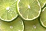 La Lime