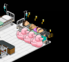 Staff Photos Habbo_14
