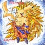Pikapika-admin