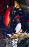 Shadow the Hedgehog2
