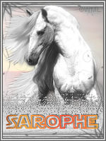 sarophe