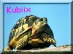 Kubiix