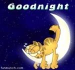 Good.night