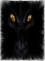 Sombre écaille