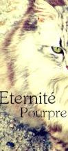 Eternité Pourpre