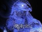jR.Aquila