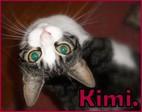 KimchTheCat