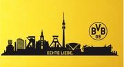 BVB Academy
